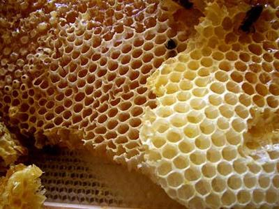 тыквенные семечки с медом от паразитов