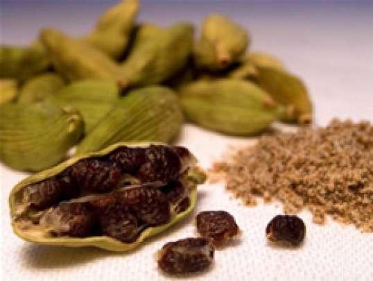 Кардамон (Elettaria cardamomum Maton)