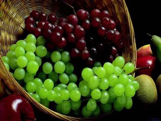Этот вкусный и полезный виноград