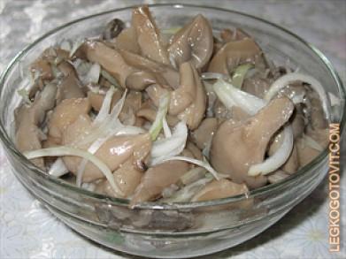 грибы вёшенка рецепты